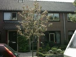 Actueel aanbod huurwoningen IJsseldal Wonen - Gorssel.nl: www.gorssel.nl/nieuwsarchief-optie/1087-nieuw-bericht